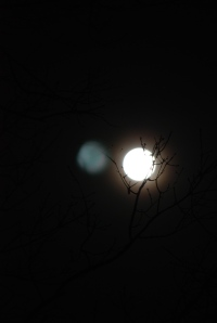 Supermoon Night_20110319_5031
