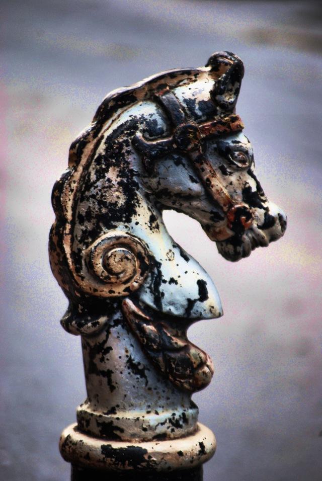 Carnival Horsehead