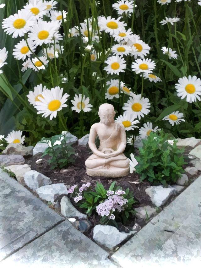 Daisy Buddha