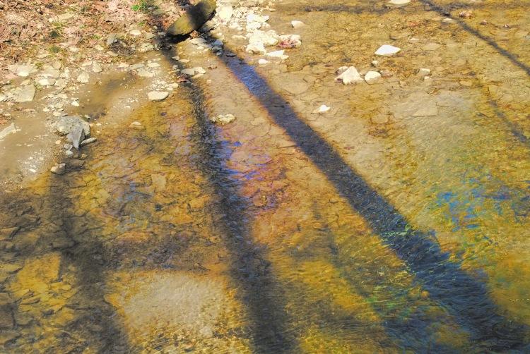 Shadow Across the Stream