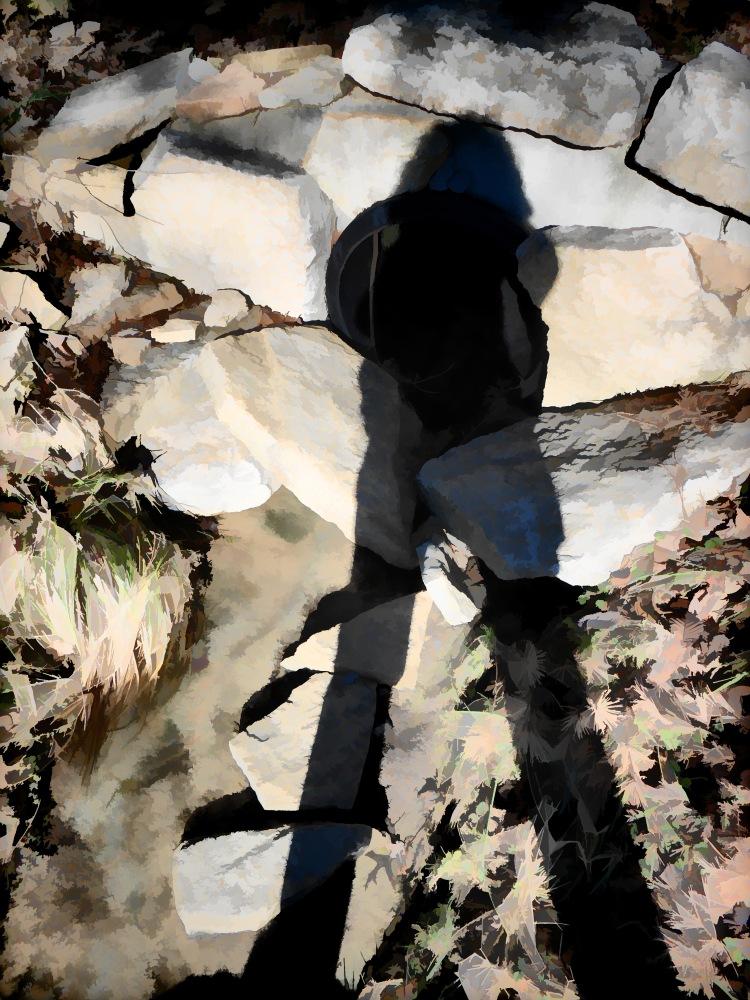Shadow Knows Sawyer Point 2013-12-27_20131227_3860