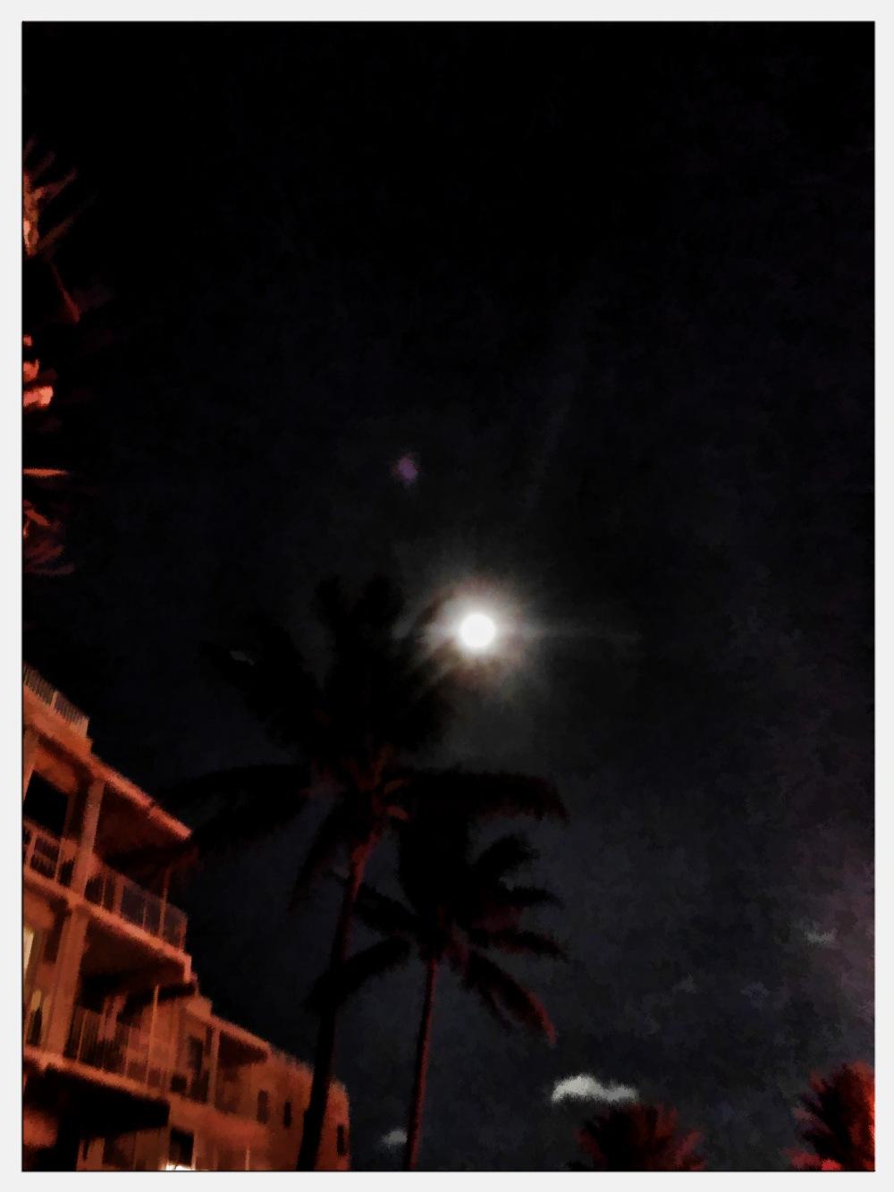 Miami Moon