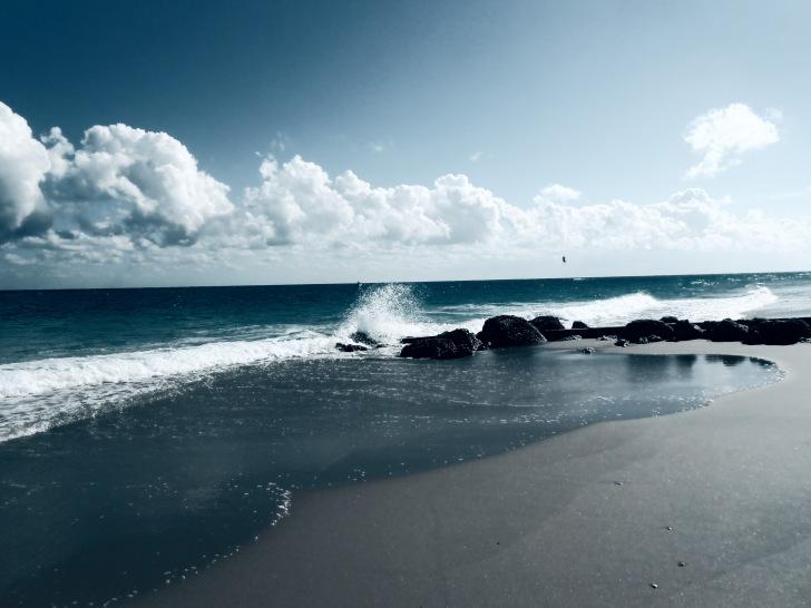 Bluest Blue2014-12 West Palm Beach_20141213_5039