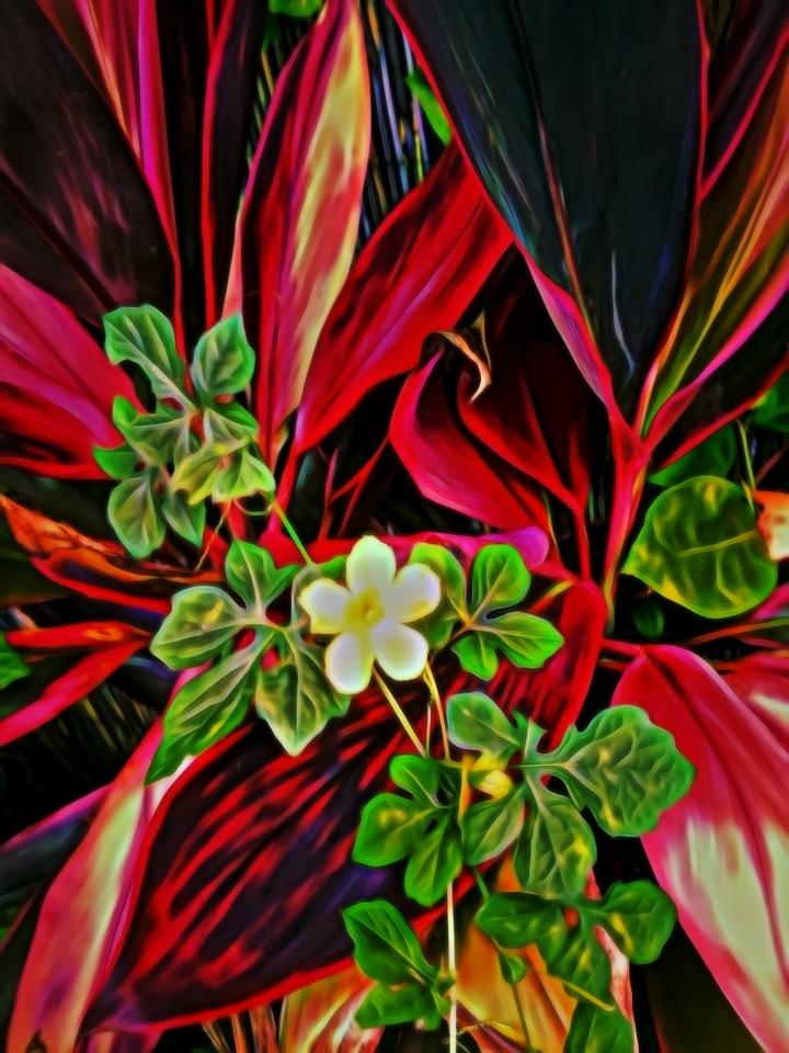 Floral Spray