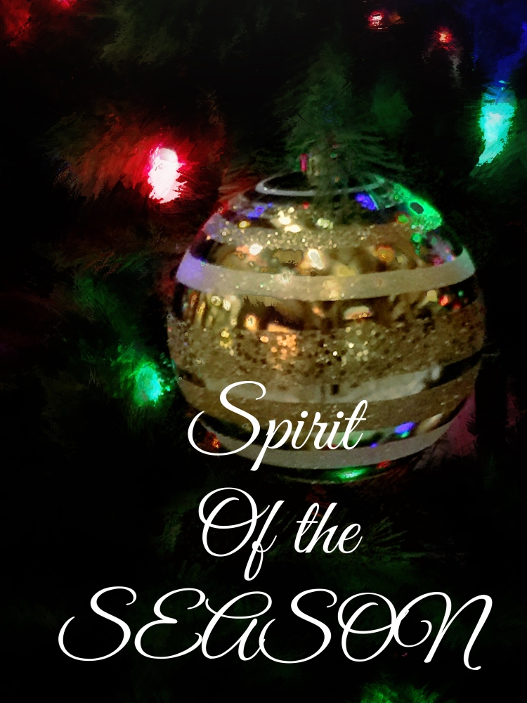 Christmas Spirit of Season 2015