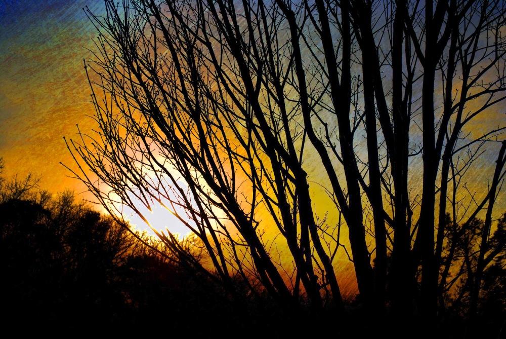 glow-ault-park_20110312_4949